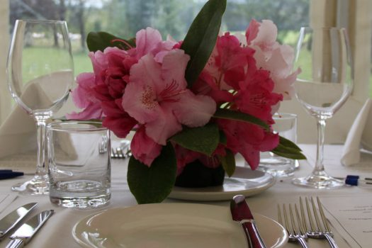 Luncheon Among the Rhododendrons