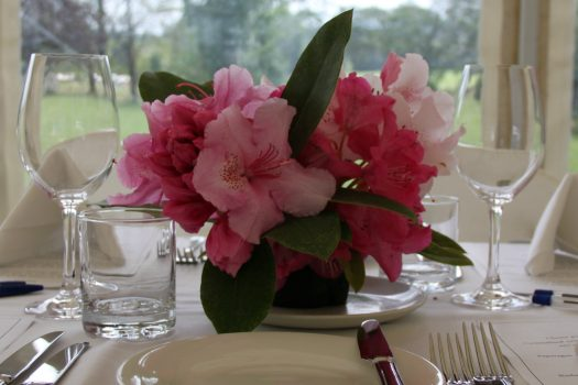 Annual Luncheon Among the Rhododendrons